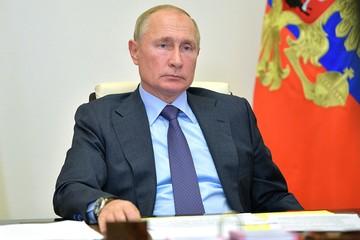 Путин взялся за голову после доклада Голиковой