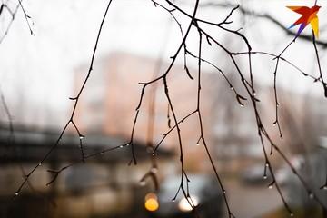 Погода в Ижевске: ожидается дождливая неделя