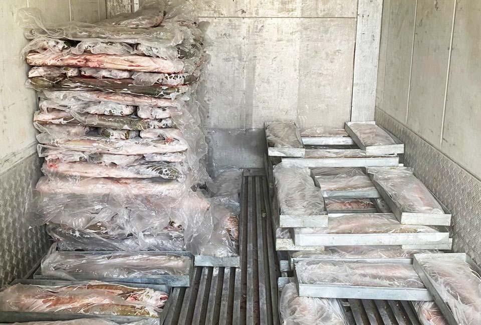 Краевой минсельхоз и рыбопромышленники подводят предварительные итоги путины-2020
