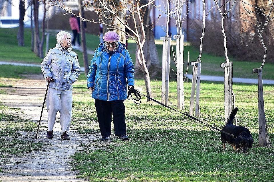 Продление заморозки накопительной пенсии поддержали в Госдуме