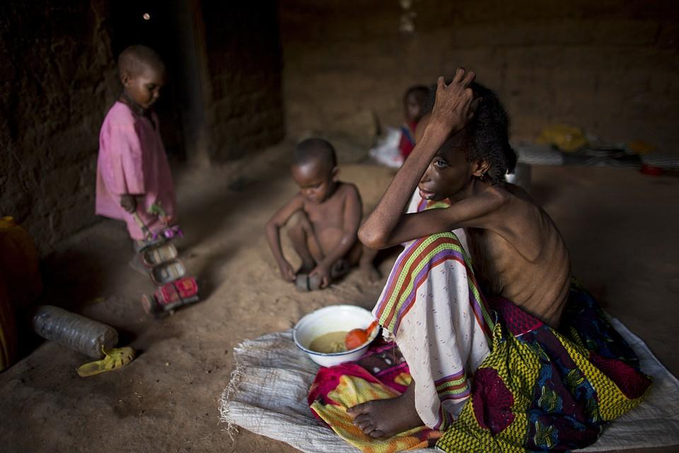 Борьбе с мировым голодом в данный момент действительно уделяется большое значение