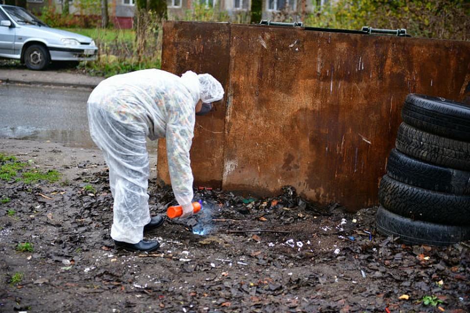 Специалисты обработали от грызунов жилые дома и мусорные баки рядом с ними