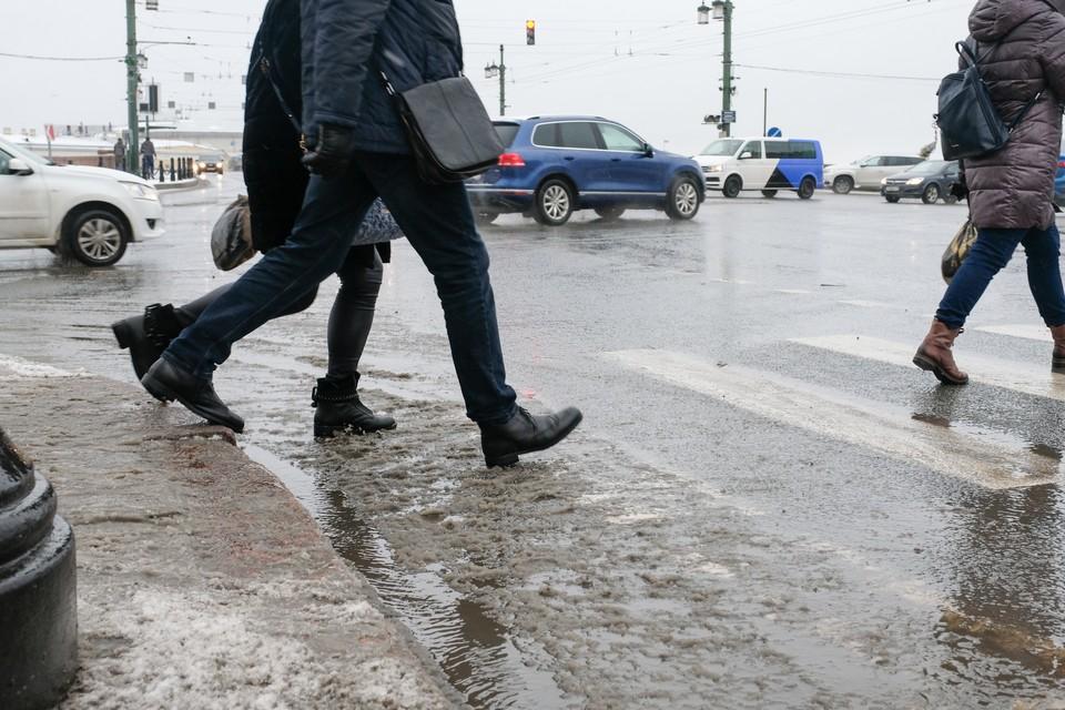 Синоптик рассказал, какая погода ожидает Санкт-Петербурге на следующей неделе