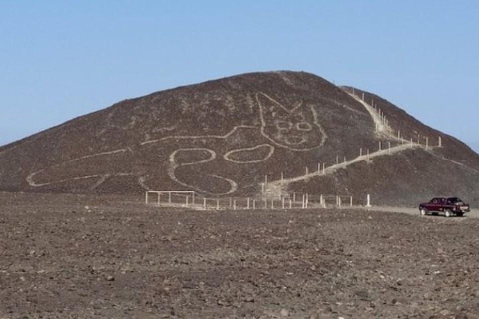 Гигантский кот нарисован на склоне холма около 2000 лет назад. Фото: министерство культуры Перу