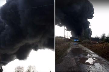«Слышно, как что-то взорвалось»: Лакокрасочный завод полыхает в Ленинградской области