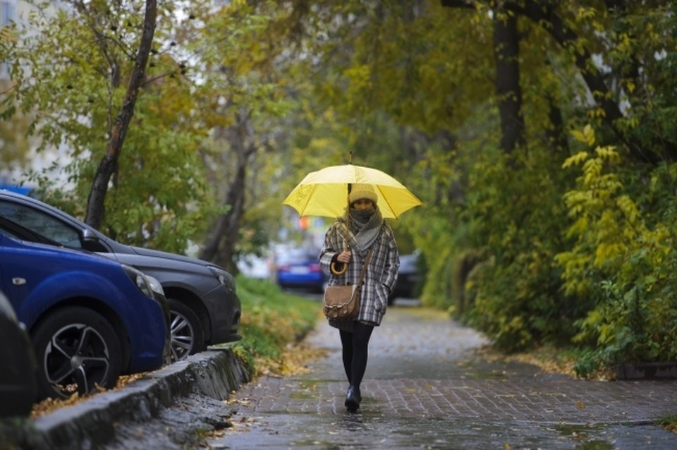 Какая погода ждет ростовчан с 30 октября по 1 ноябре.