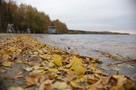 Погода на ноябрь 2020 в Челябинске: придет ли в город аномальное потепление
