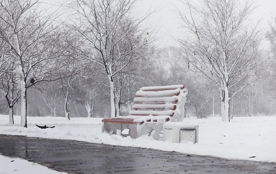 Снег ожидают синоптики в эту пятницу.