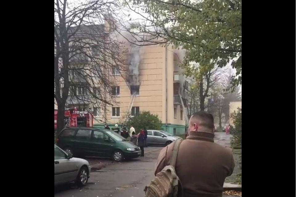 Пожар произошел в многоэтажке Минска на улице Волохова. Фото: соцсети.