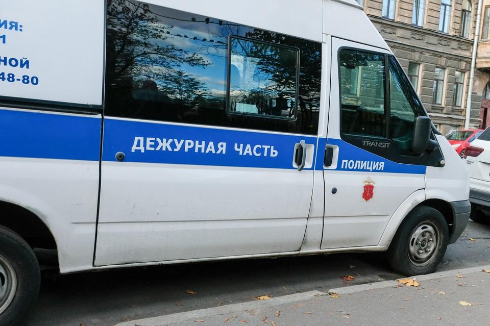 В лесу в Петербурге нашли закопанную в землю мертвую женщину.