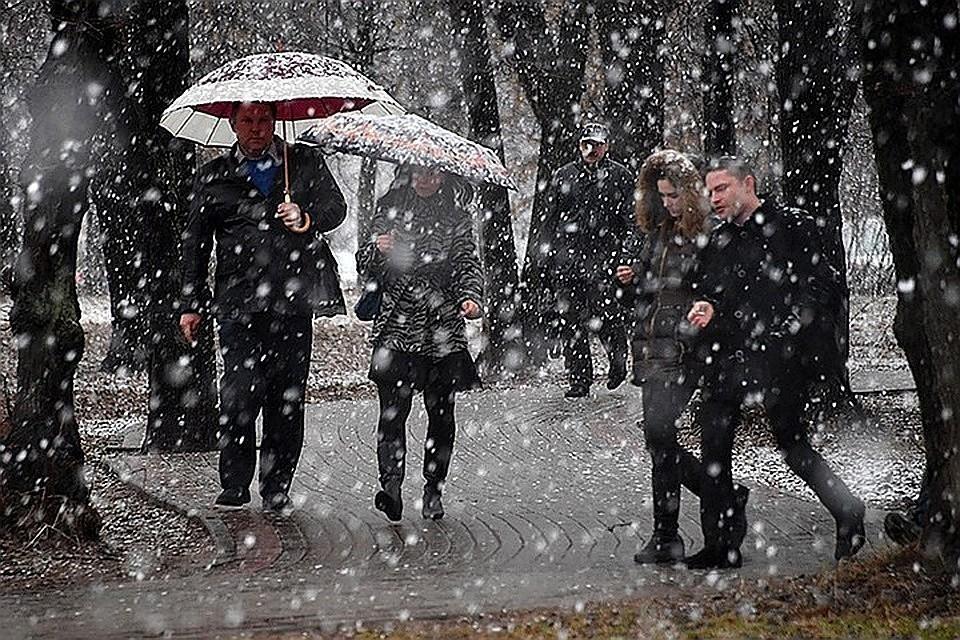 МЧС предупредило жителей Москвы и Подмосковья об усилении ветра и гололедице