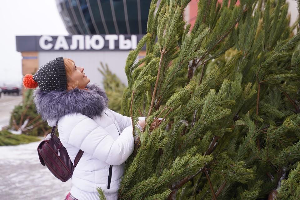 Омичам посоветовали остаться на новогодних праздниках дома.