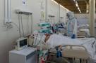 Коронавирус в Волгоградской области, последние новости на 1 января: в Новый год заболели еще 276 человек