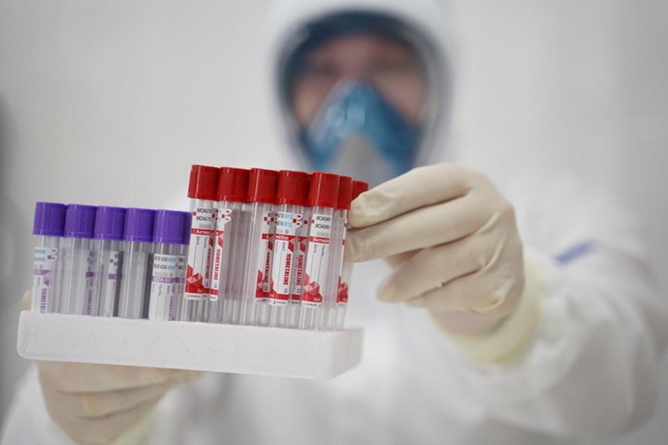 Более полную информацию о тестировании на коронавирус в праздничные дни можно получить на сайтах медицинских организаций.