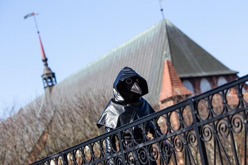 Весна 2020 года. По центру Калининграда бродит Чумной доктор.