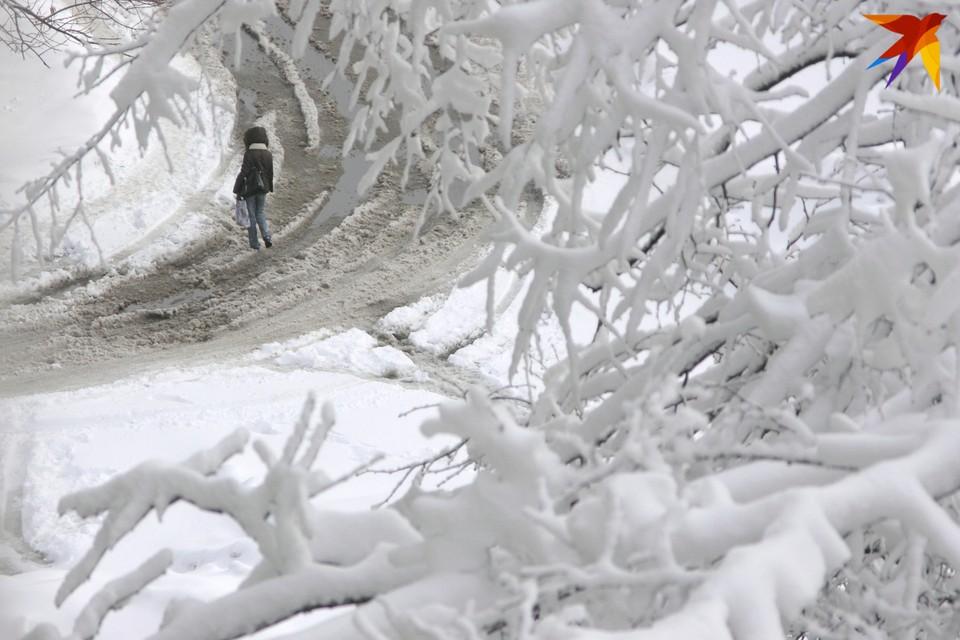 Стало известно, сколько продержатся лютые морозы в Беларуси