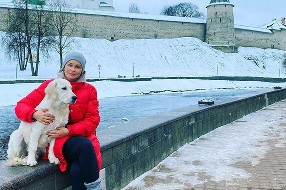 Юлия Пересильд завела золотого ретривера. Девочка Кэти - уже довольно крупный щенок, хотя ей всего полгода