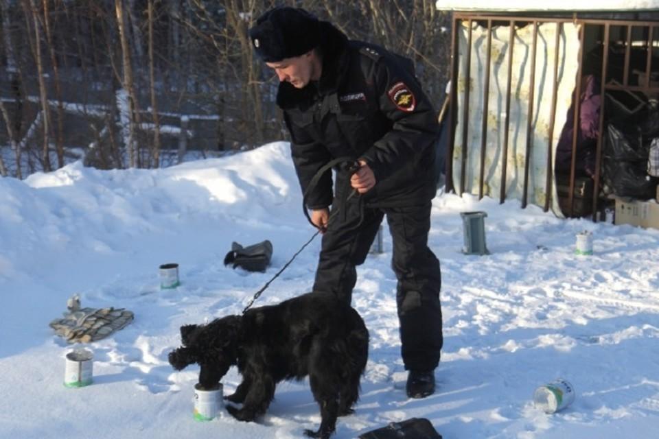 Полиция задержала фартового хранителя наркотиков в Хабаровском крае