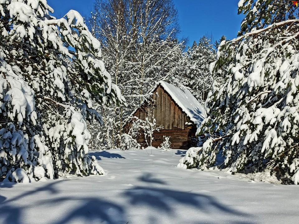 Зима в пущанской деревне Стойлы.