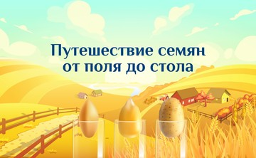 Интерактивная игра: «Путешествие семян от поля до стола»