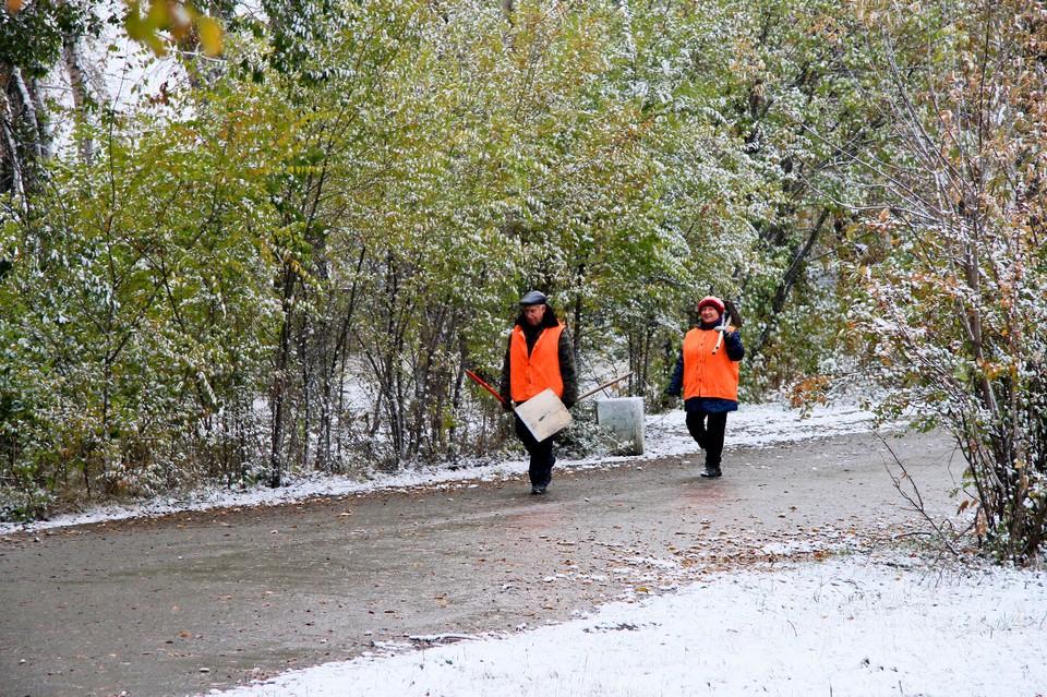 Какой будет погода в Алтайском крае с 12 по 19 февраля.