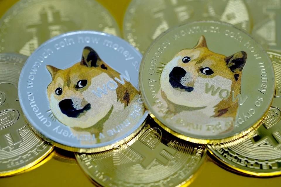 Илон Маск призвал владельцев Dogecoin продать часть криптовалюты