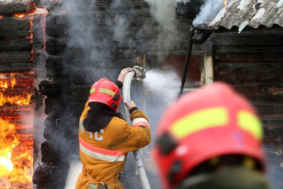 В обеих пожарах погибли хозяйки жилых домов, 91-летние женщины.