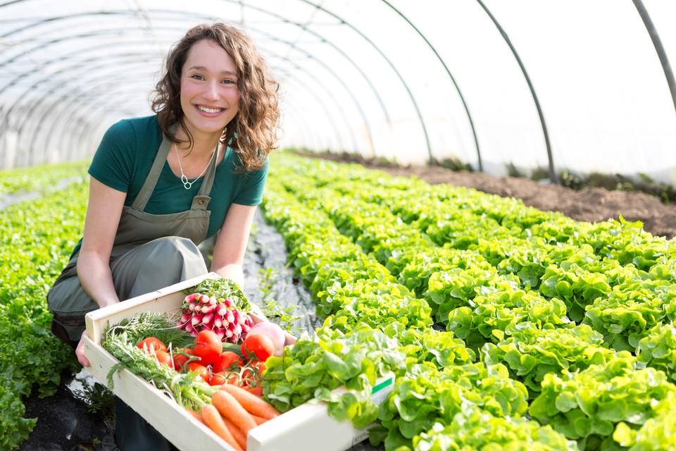 Благодаря низкой ставке аграрии теперь могут свободно пользоваться кредитными средствами.