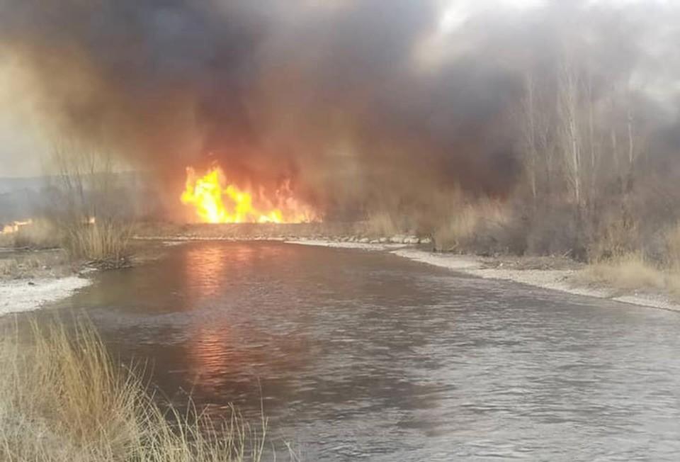 Под Бишкеком вспыхнул крупный пожар.