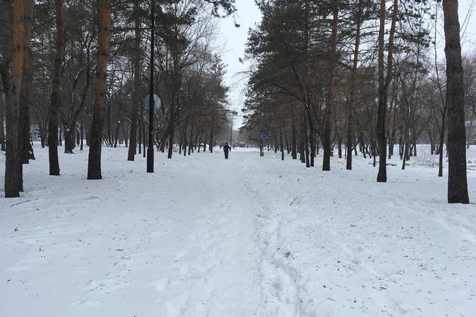 Коронавирус в Хабаровском крае: вакцинация, заболеваемость на 21 февраля 2021 года