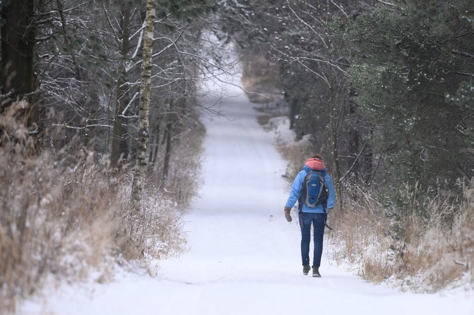 Синоптики сообщили, что потепление придет в центр России в конце месяца