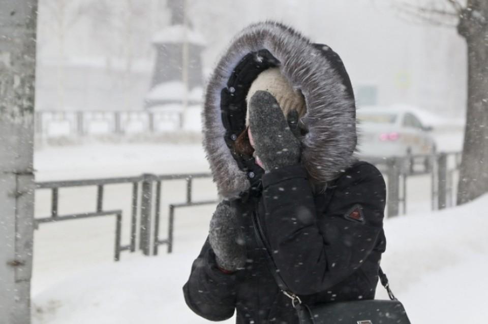 В трех районах Челябинской области из-за сильного ветра и мощных снегопадов ввели режим ЧС
