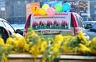 Где купить цветы к 8 марта: в Волгограде откроют 90 площадок
