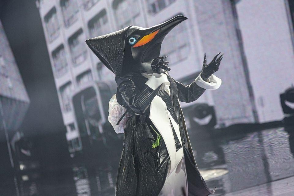 Кто скрывался под маской Пингвина: участник шоу «Маска-2» расплакался и не смог спеть на бис