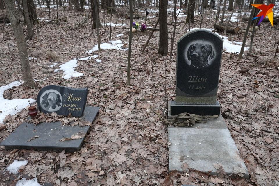 Такие надгробья для умерших животных можно увидеть в городе и окрестностях Минска.