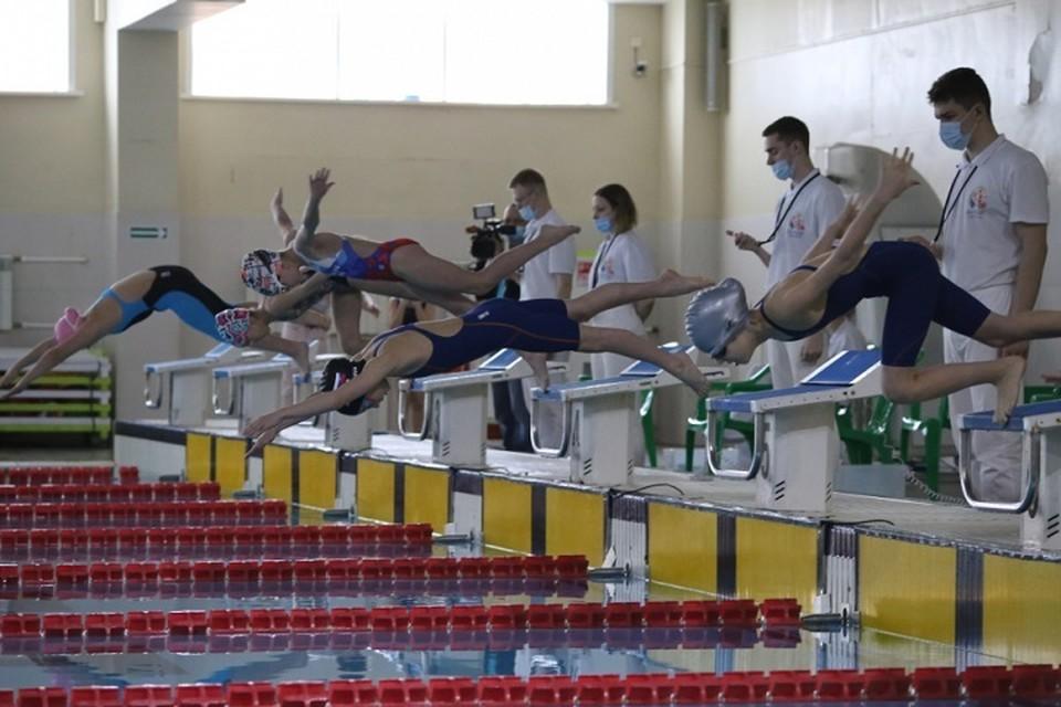Хабаровские пловцы стали чемпионами на соревнованиях «Амурские тигрята»