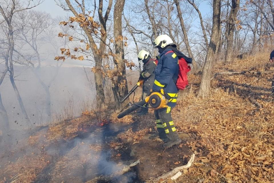Во Владивостоке ввели особый противопожарный режим