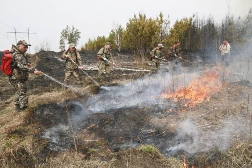 В Малмыжском районе загорелась сухая трава.