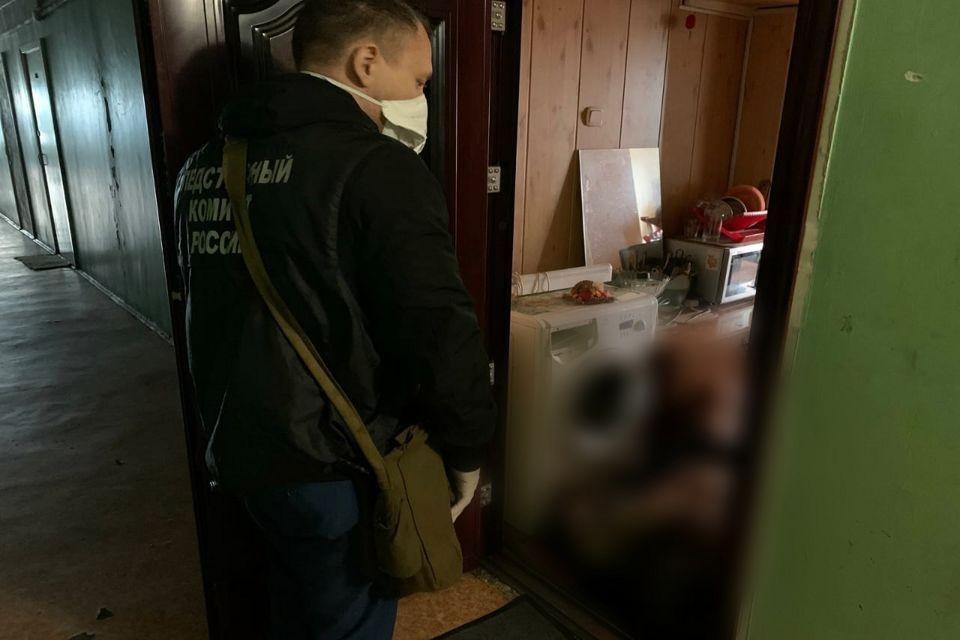 Северянину грозит до 15 лет лишения свободы. Фото: СУ СКР по МО