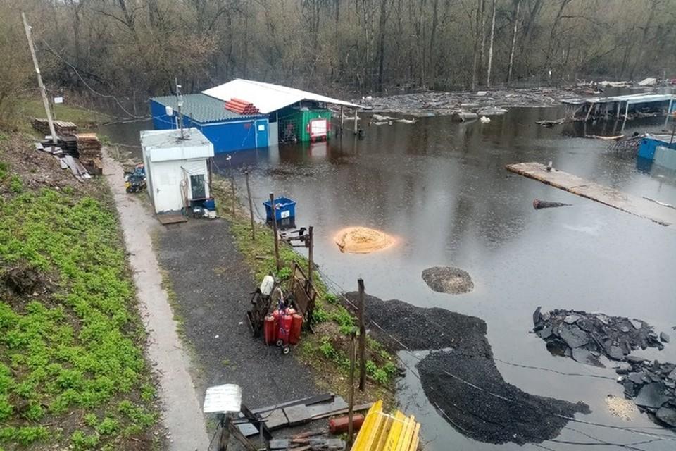 Фото: группа «Общественный экологический контроль» в vk.com.