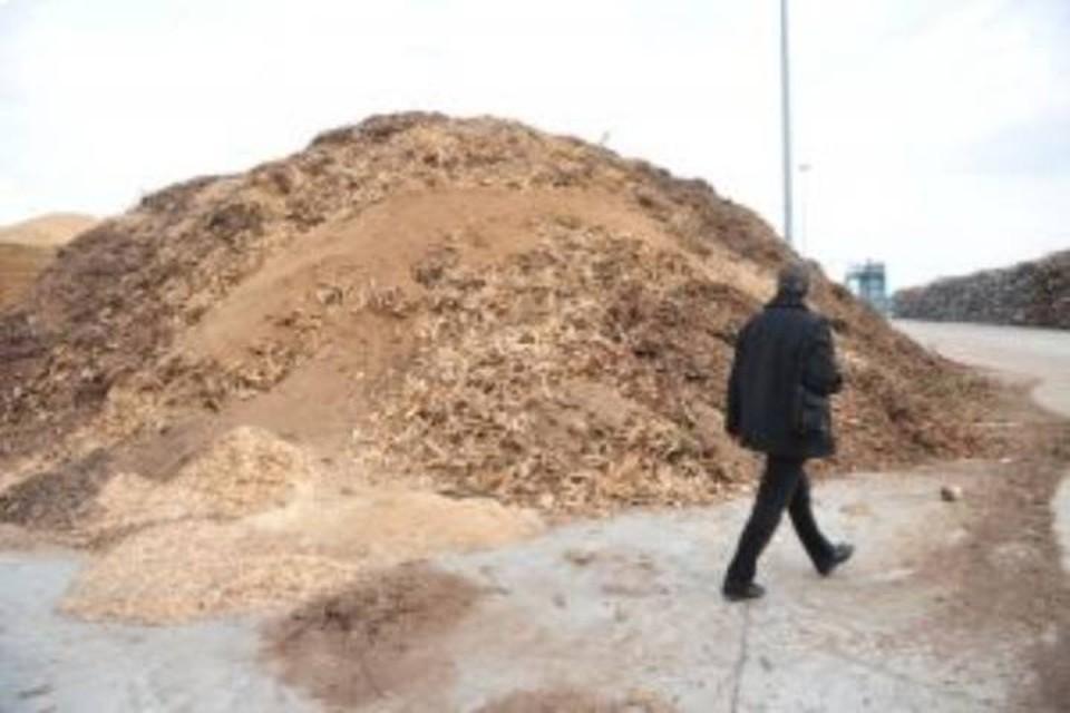 В Кировской области на деревообрабатывающее предприятие, которое незаконно складировало отхода, завели уголовное дело.