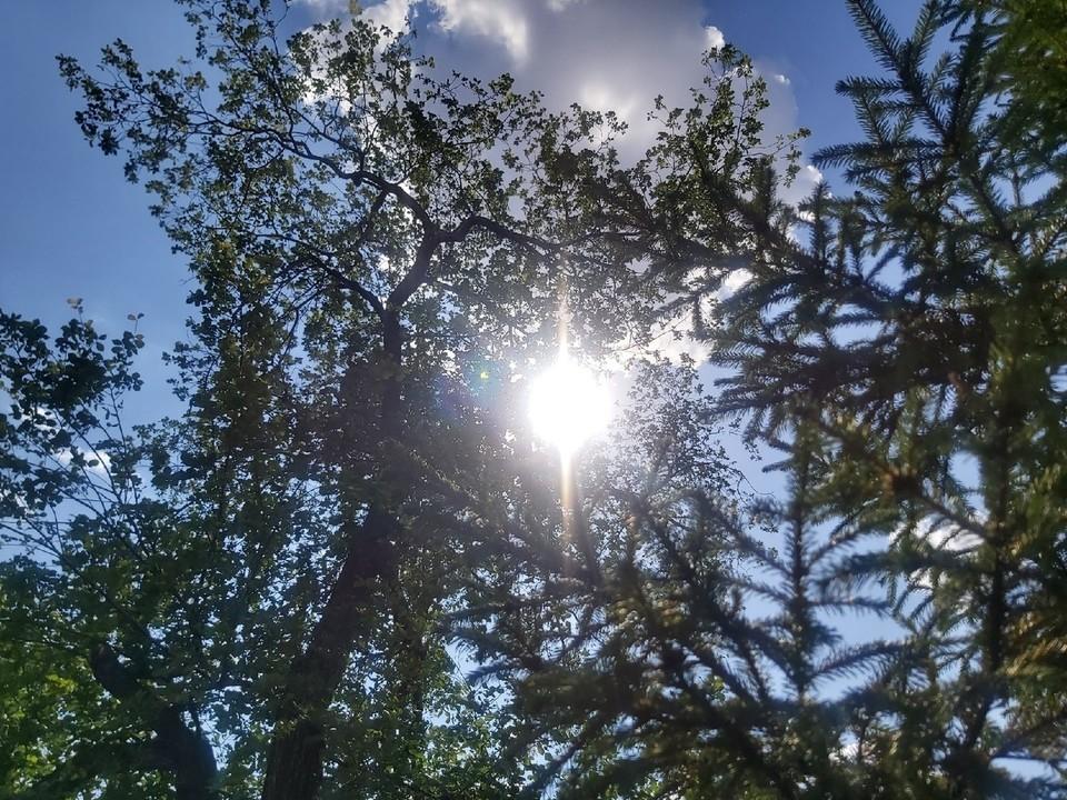 Тепло в Омск придет на следующей неделе, но оно принесет с собой дожди.