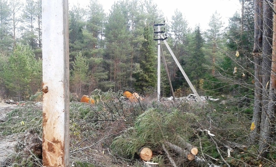 В результате повреждения отсутствовал доступ в интернет и не работала услуга IP-телевидения в 10 северных районах республики Коми.
