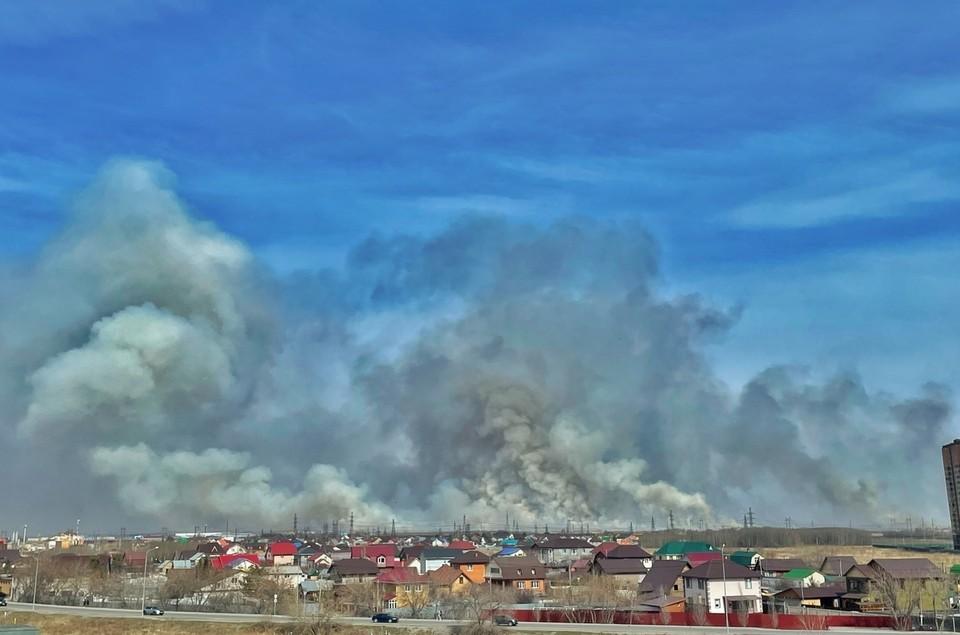 В Тюмени горят поля, перекрыта дорога.