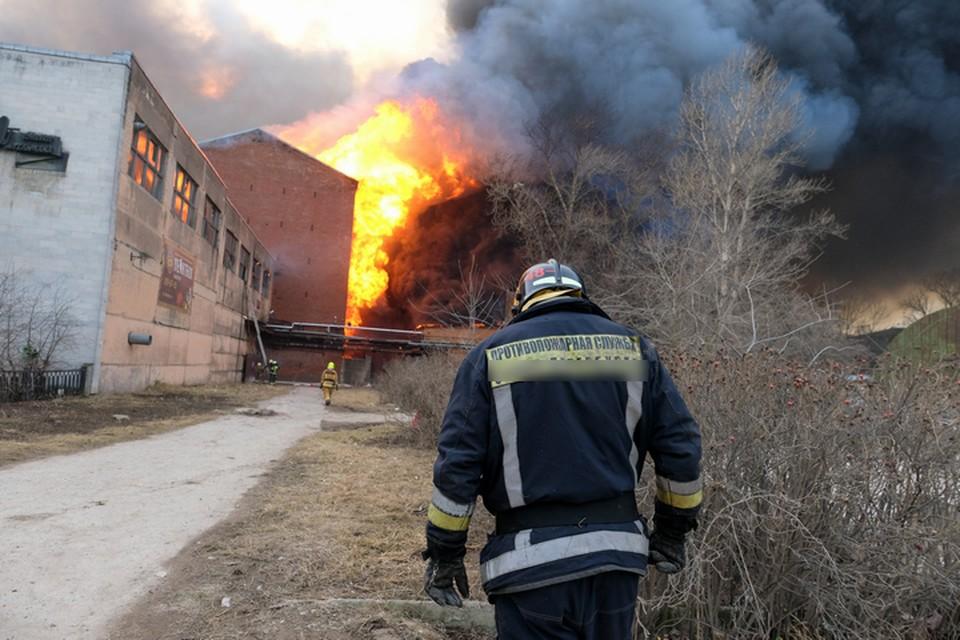 Причины возникновения пожара неизвестны.