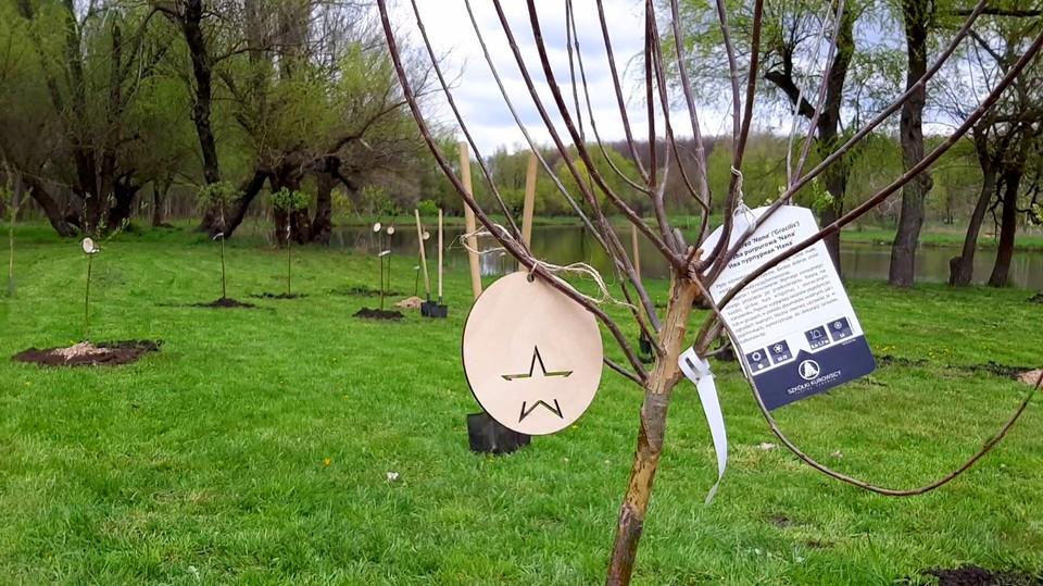 В Молдове впервые состоялся проект «Greening of The Planet».