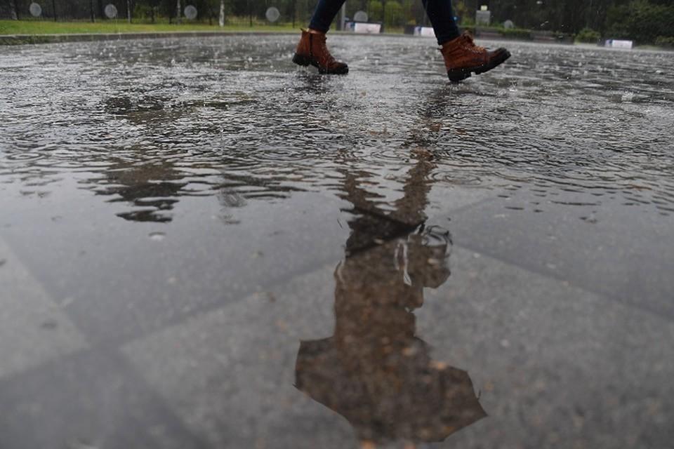Во вторник в Кузбассе потеплеет до + 18