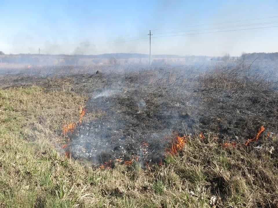 В Калининградской области установлен особый противопожарный режим.