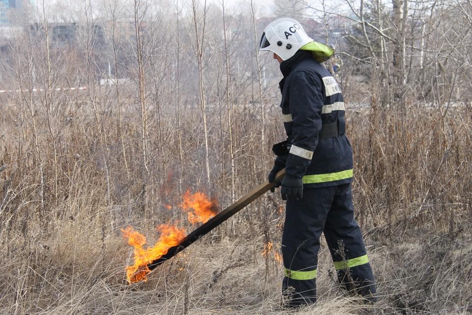 Отжиг травы планируется провести в 21 городе и районе Иркутской области