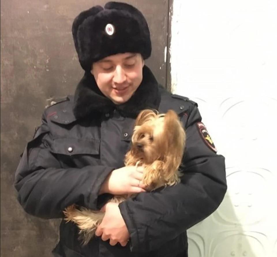Полицейский не дал собаке умереть от жажды и голода. Фото: ГУ МВД по Челябинской области
